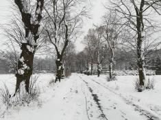 Příroda čaruje - zima ve Svaťáku